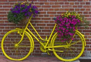 Holländisches Blumenrad